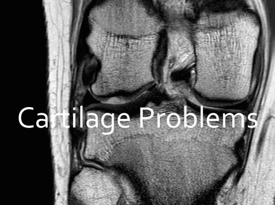cartilage problems